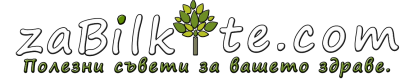 zabilkite.com