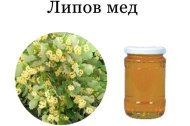 Липов мед